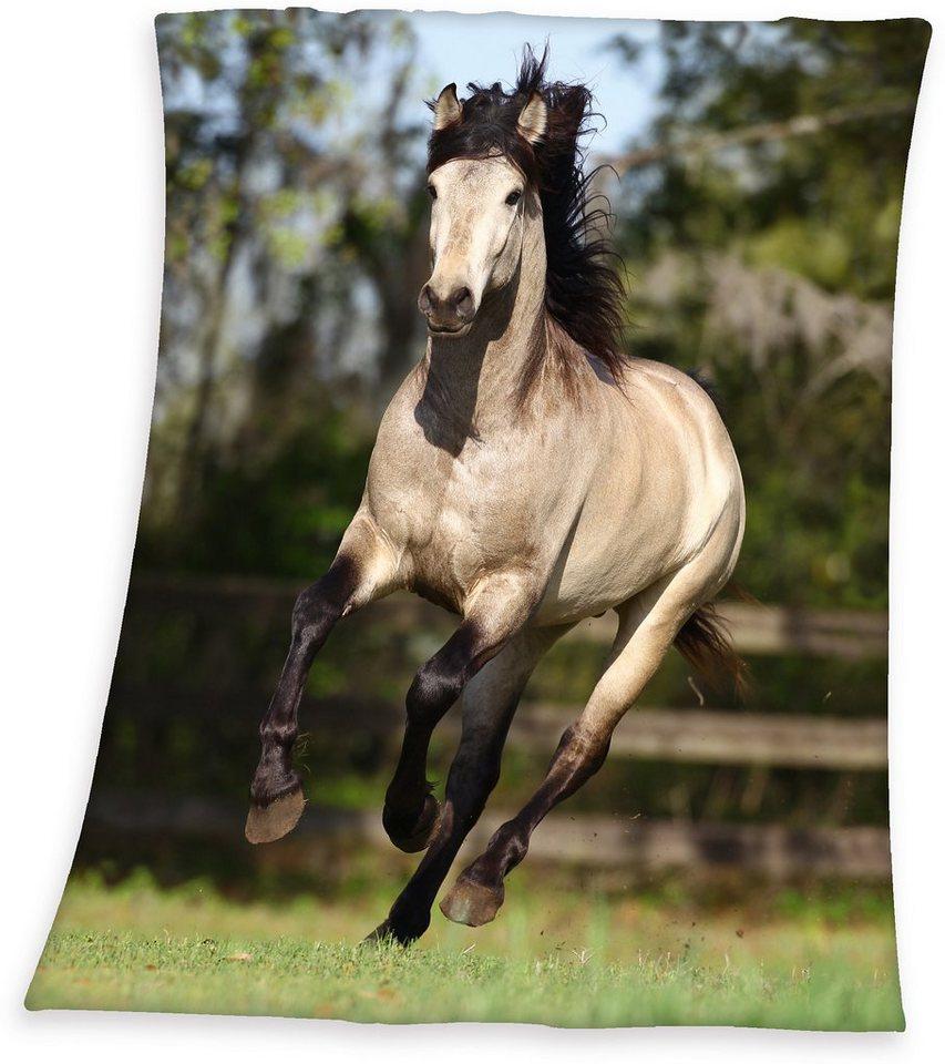 Kinderdecke, Young Collection, »Pferd«, für Reiterfreunde in multi