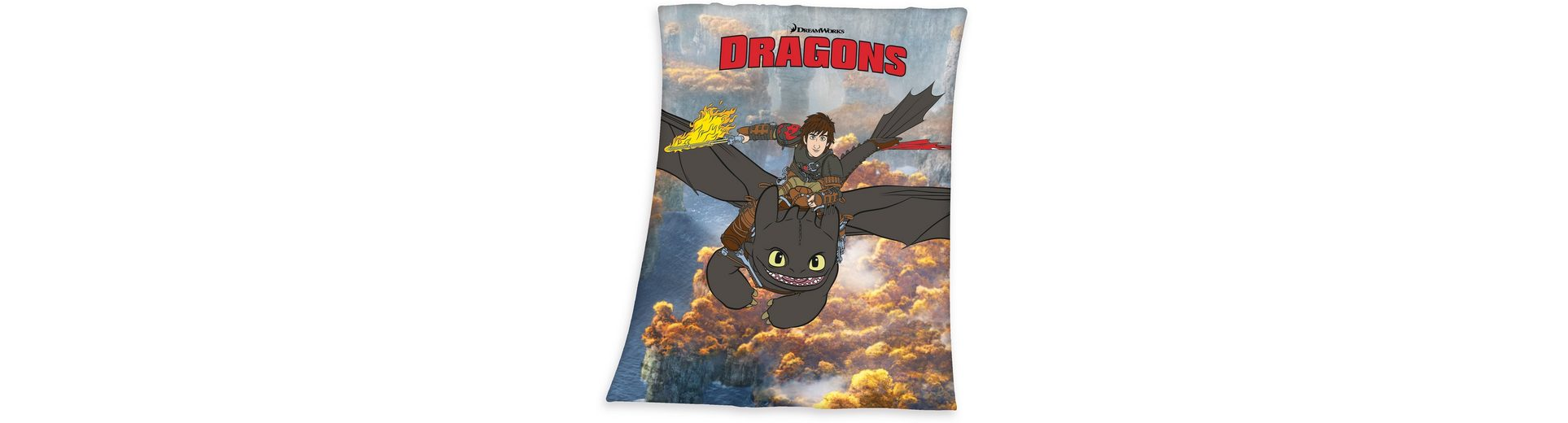 Kinderdecke, Dream Works, »Dragons«, großflächiges Motiv