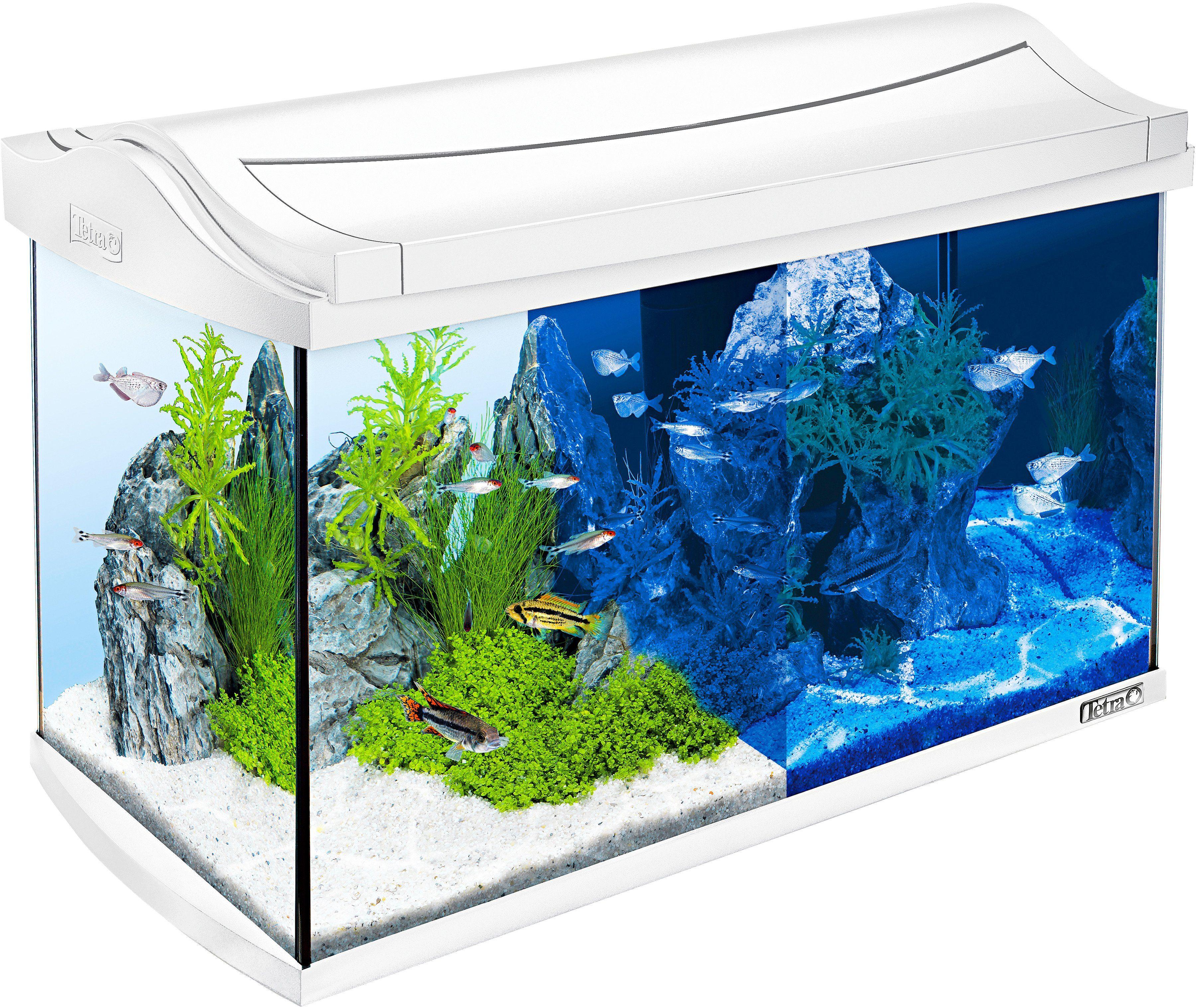 Tetra Aquarium »AquaArt LED Discovery Line« 60 l, weiß