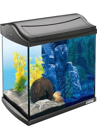 TETRA Akvariumas »AquaArt LED Discovery Line...