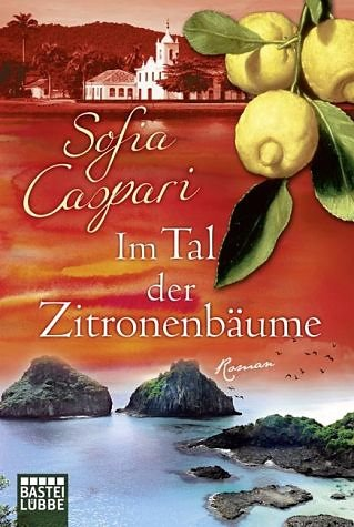 Broschiertes Buch »Im Tal der Zitronenbäume«