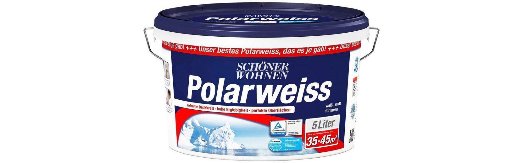 Innenfarbe »Polarweiß 5L scheuerbeständig«