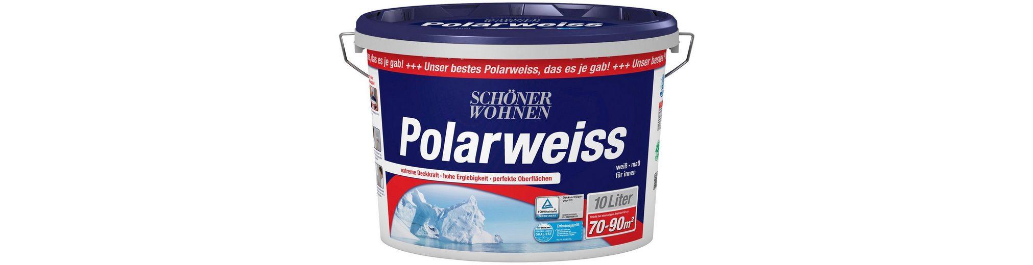 Innenfarbe »Polarweiß 10L scheuerbeständig«