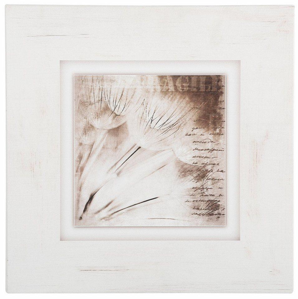 Holzbild, Home affaire, »Pusteblumen«, 40/40 cm in creme