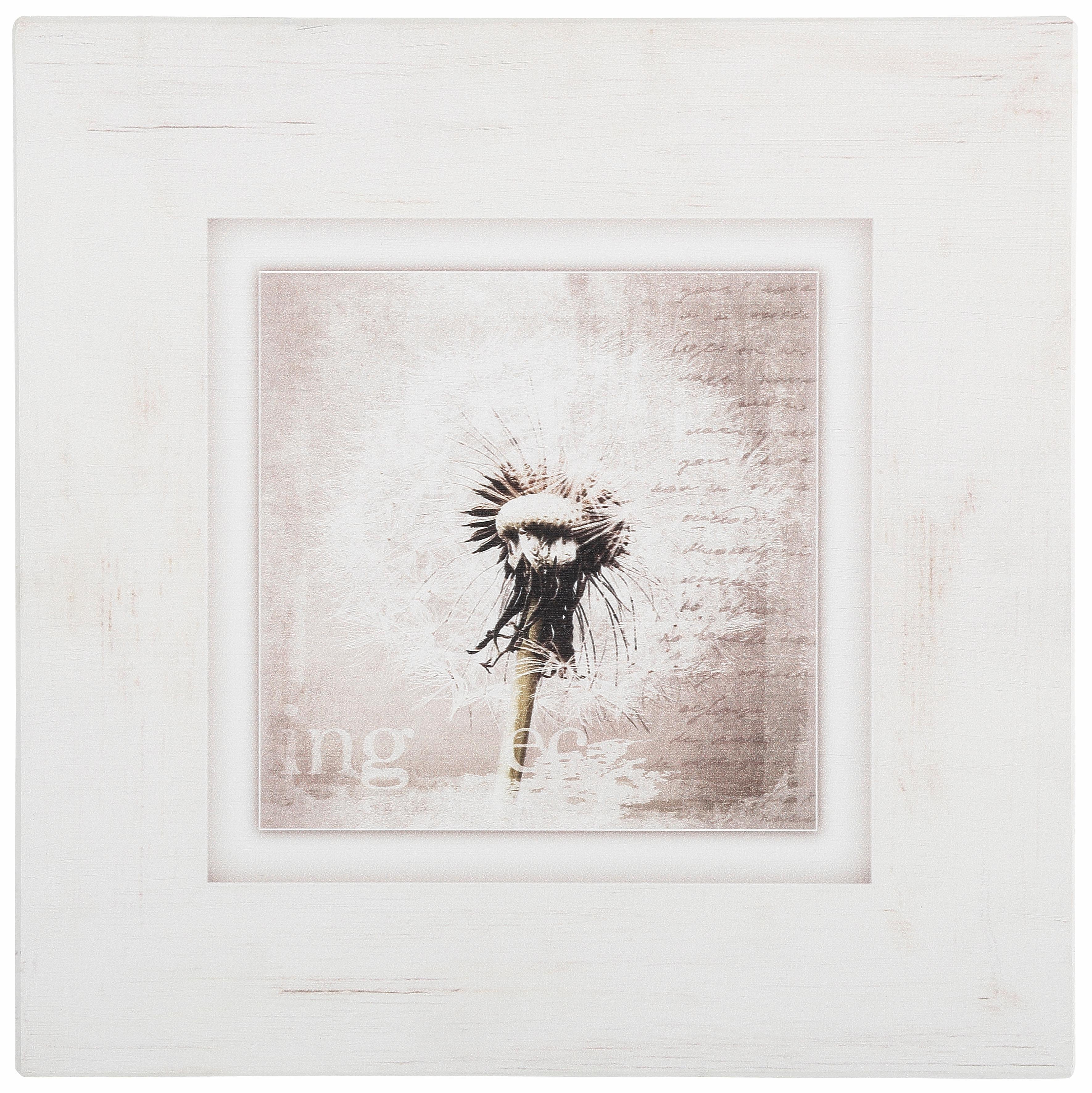 Holzbild, Home affaire, »Pusteblume«, 40/40 cm