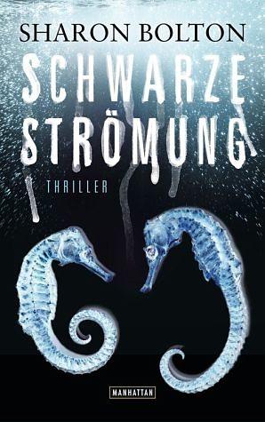 Broschiertes Buch »Schwarze Strömung / Lacey Flint Bd.4«