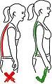 Hydas Geradehalter mit Stützgürtel »1526.5.00« (3-tlg), Bild 3