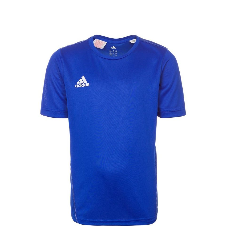 adidas Performance Core 15 Trainingsshirt Kinder in blau / weiß