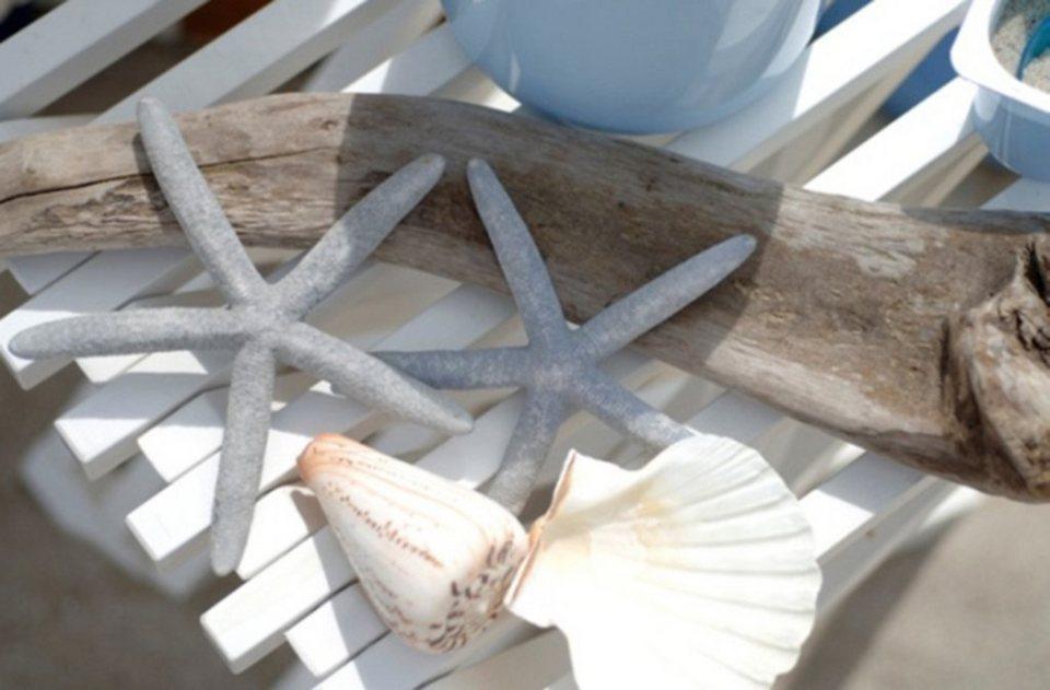 Premium collection by Home affaire Leinwandbild »Stars & Shells«, 118/78 cm in weiß/grau