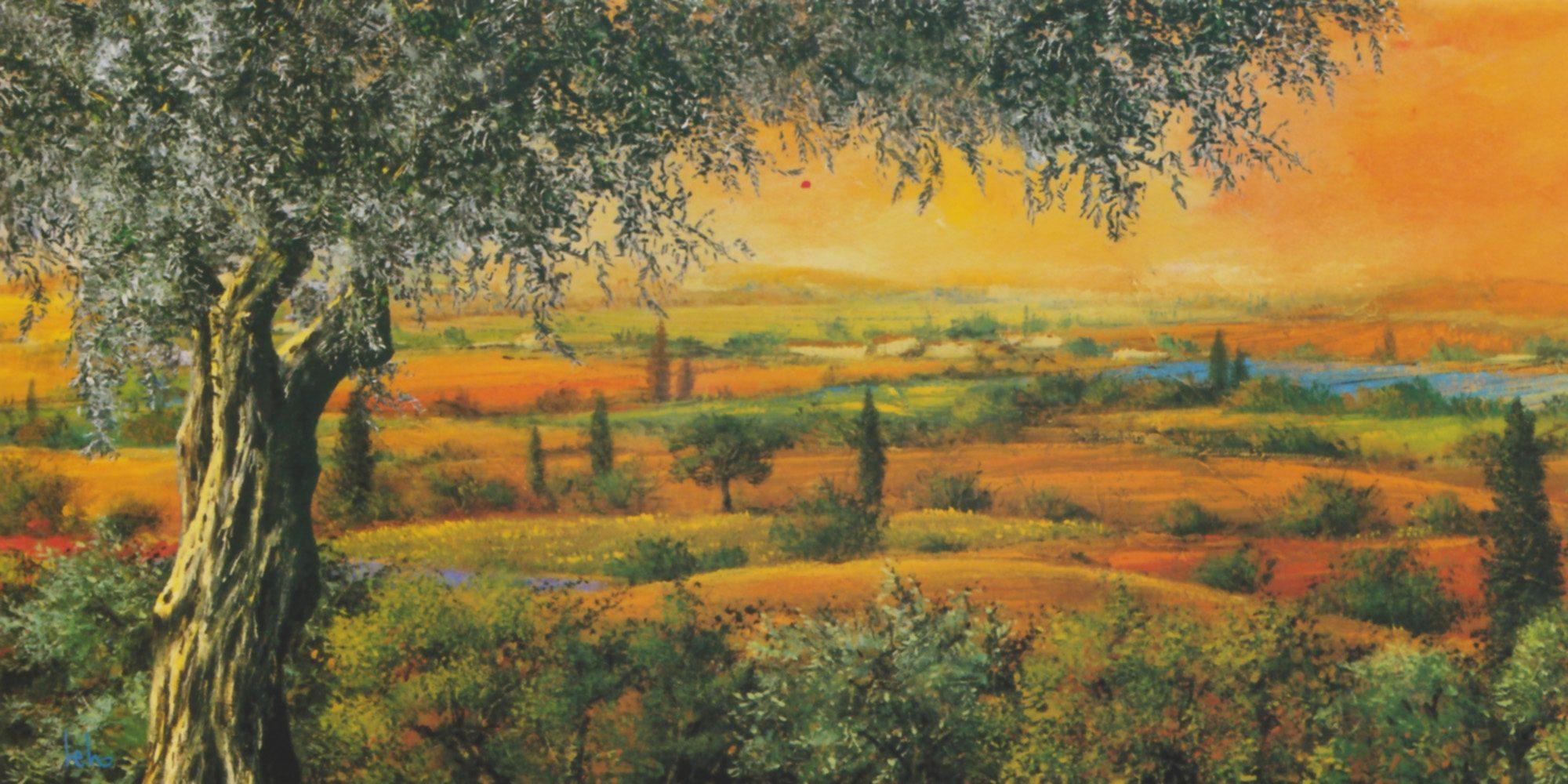 Home Affaire Bild Kunstdruck »Tebo Marzari, Vallata degli ulivi«, 100/50 cm