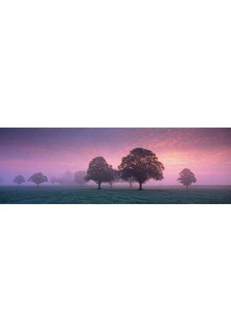 HOME AFFAIRE Paveikslas ant drobės »Abendnebel«
