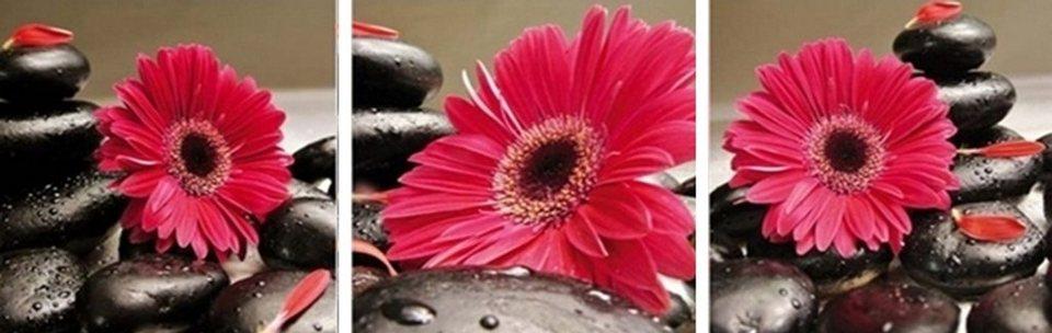 Home Affaire Bild Kunstdruck »Red Flowers«, (3-tlg.) in pink/schwarz