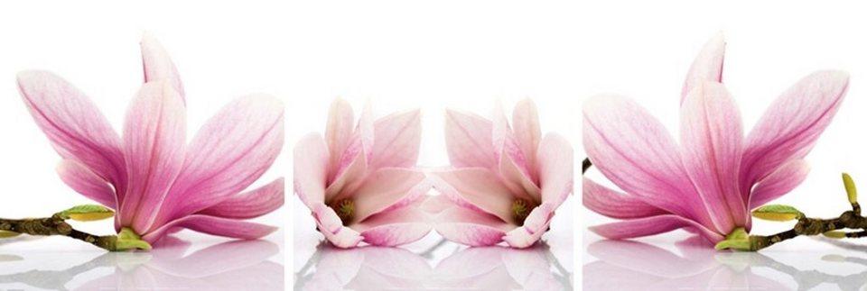Home Affaire Bild Kunstdruck »Magnolia«, (3-tlg.) in weiß/rosa