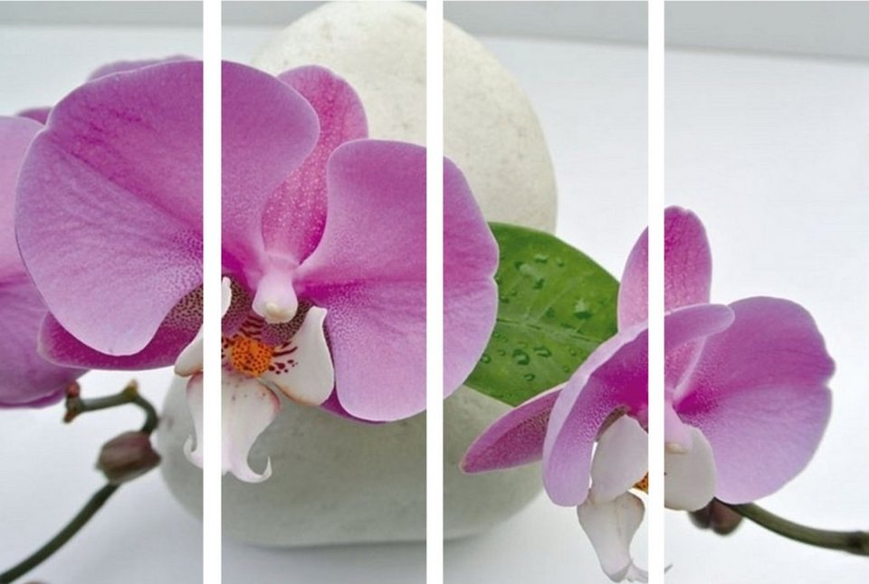 Home Affaire Bild Kunstdruck »Orchidee«, (4-tlg.) in lila/weiß
