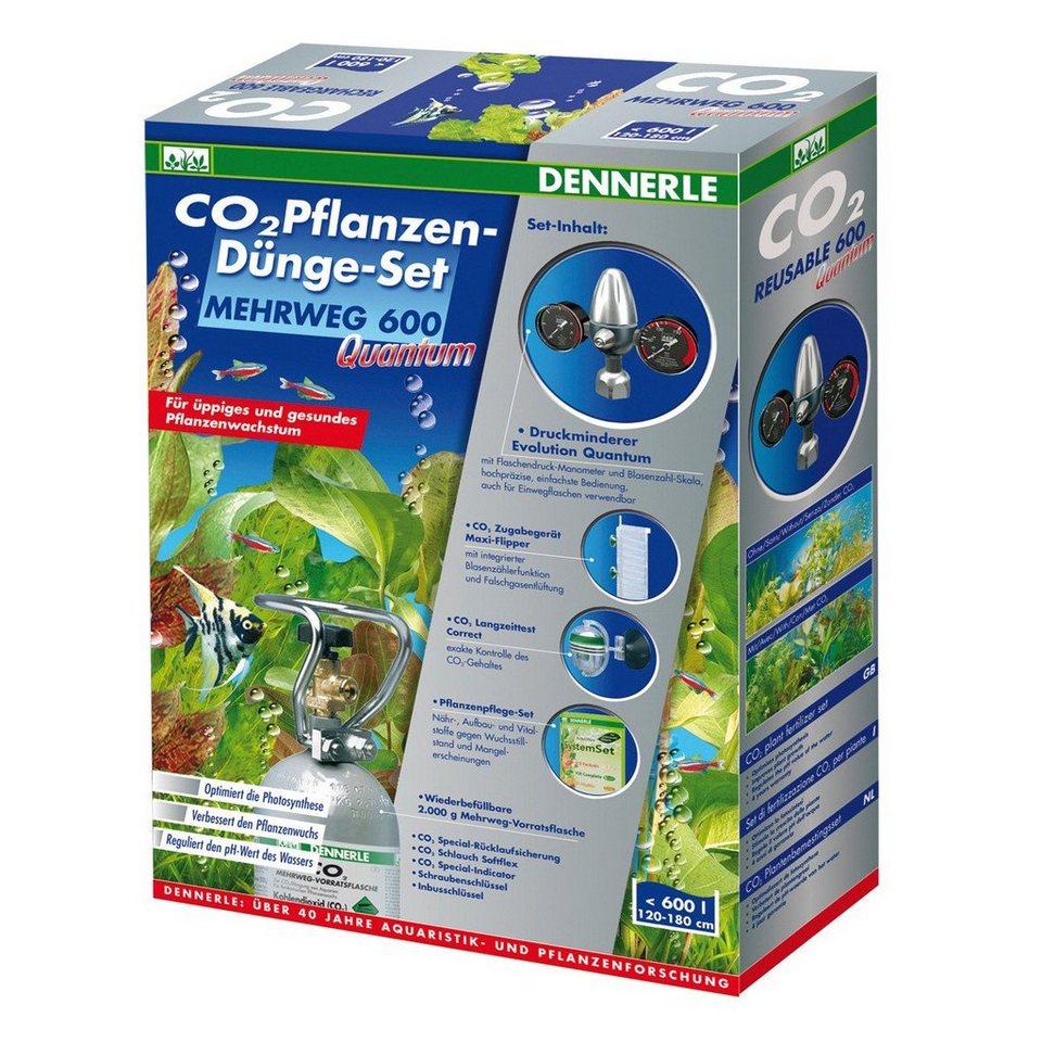 Aquariumpflege »CO2 Pflanzen-Dünge-Set MEHRWEG 600 Quantum« in silberfarben