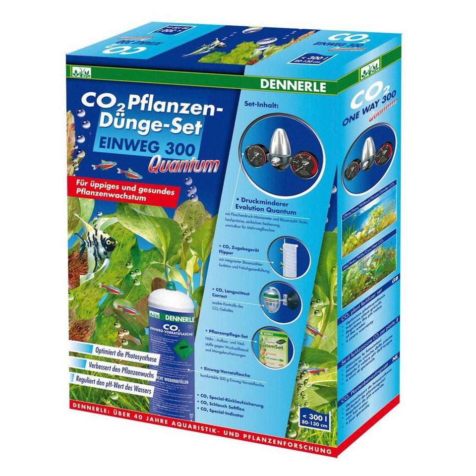 Dennerle Aquariumpflege »CO 2 Pflanzen-Dünge-Set Einweg 300« in silberfarben