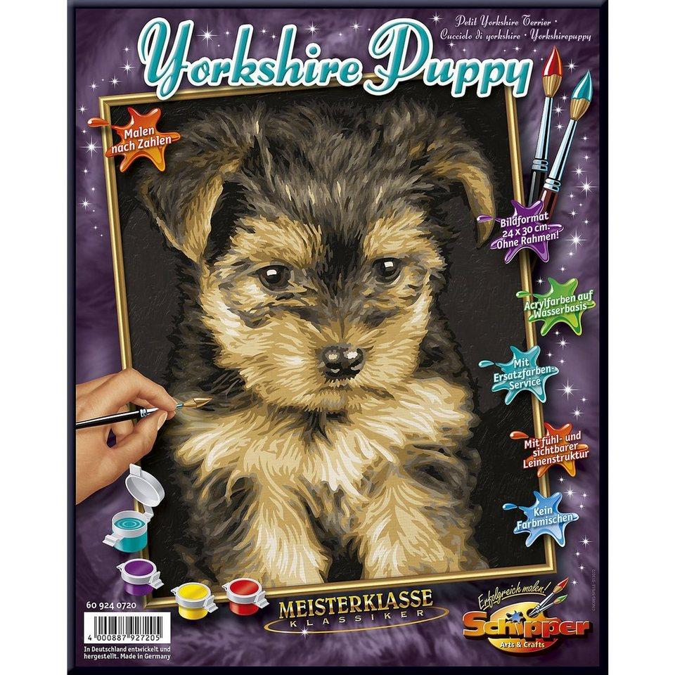 Schipper Malen nach Zahlen-Yorkshire Puppy
