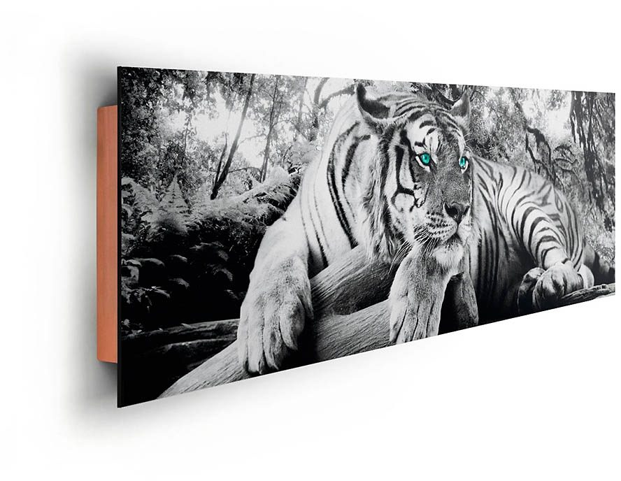 Home affaire, Deco Panel »Tiger guckt dich an«, 156/52 cm