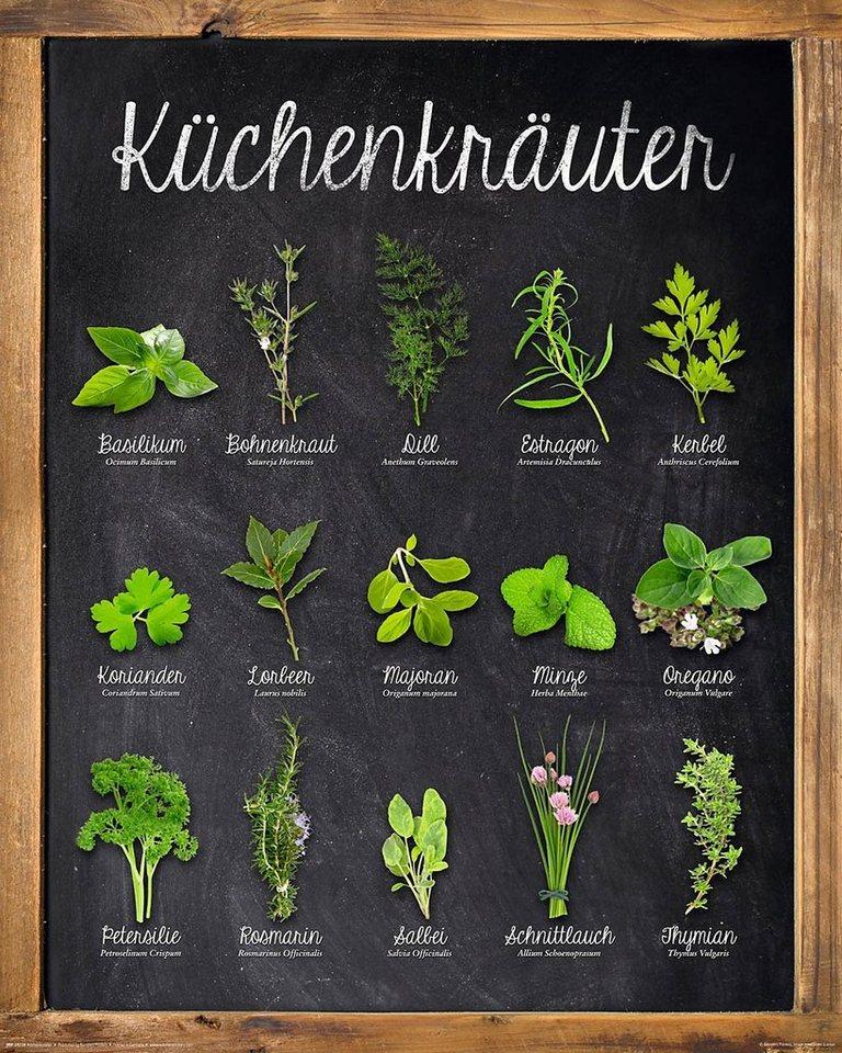 Home affaire, Deco Panel »Küchenkräuter« 40/50 cm in grün/anthra.