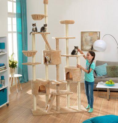 abuki kratzbaum xxl deckenspanner kratzbaum online. Black Bedroom Furniture Sets. Home Design Ideas