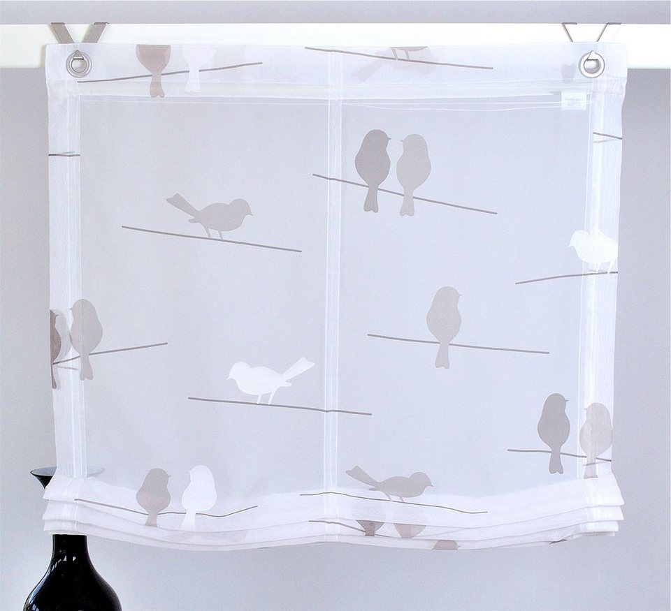 raffrollo birds kutti mit hakenaufh ngung ohne bohren. Black Bedroom Furniture Sets. Home Design Ideas