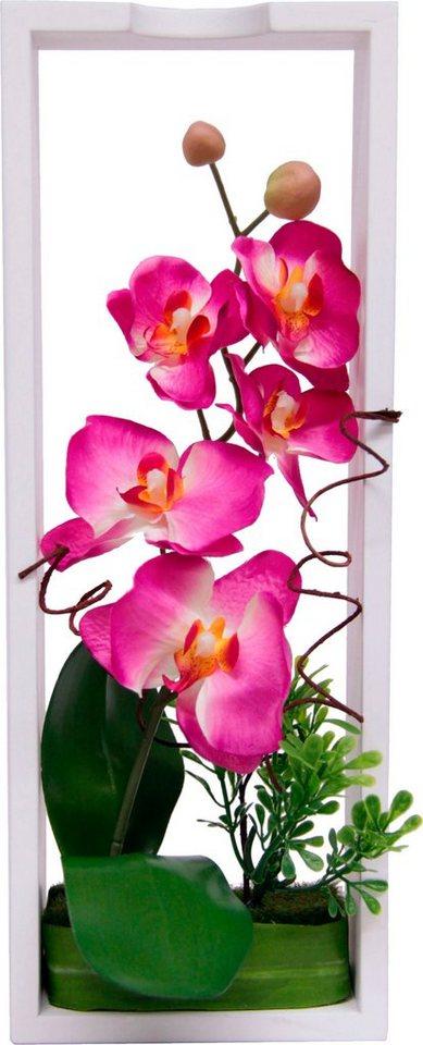 Home affaire Kunstblume »Orchidee« in Rahmen in rosa