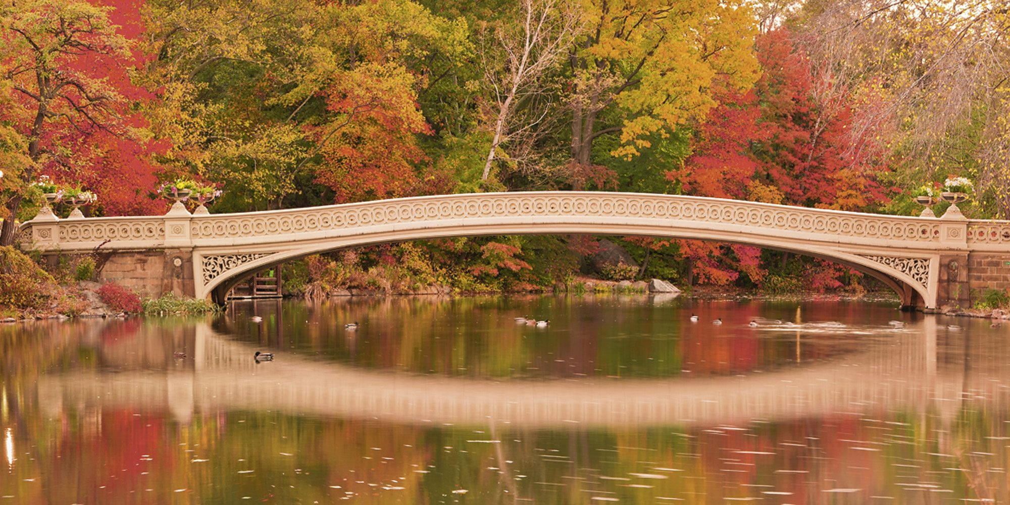 Home affaire Glasbild »EastVillage Images: Bow Bridge im Central Park. N. Y. City«, 100/50 cm