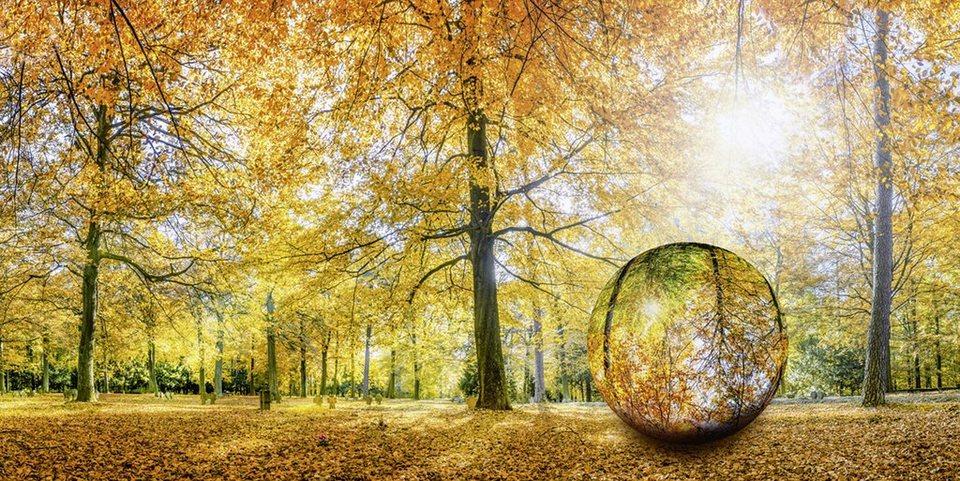 Home affaire Glasbild »eyetronic: Herbstwald Panorama - Glaskugel«, 100/50 cm in Orange