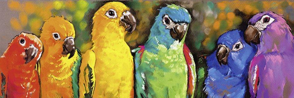 Home affaire Leinwandbild »automatic9751: Papageien«, in 2 Größen in Bunt