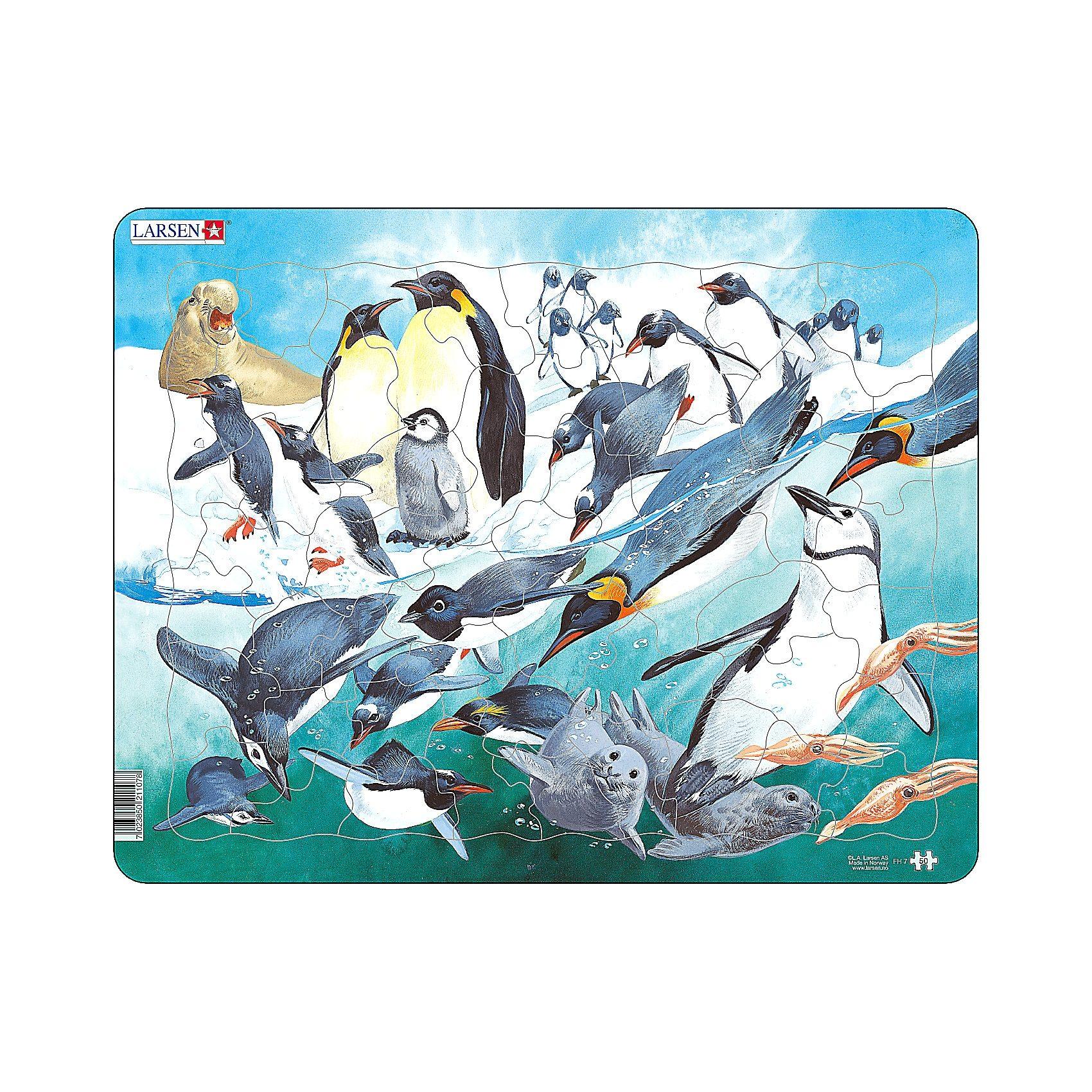 Larsen Rahmenpuzzle 50 Teile Pinguine