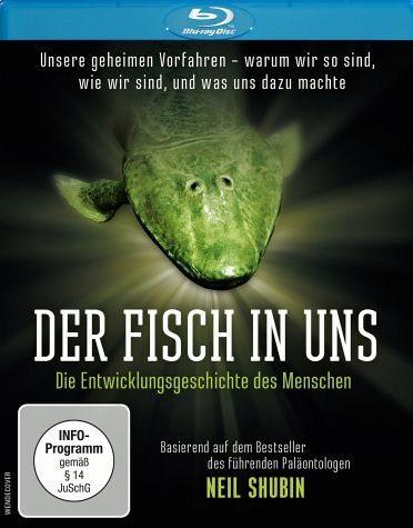 Blu-ray »Der Fisch in uns - Die Entwicklungsgeschichte...«