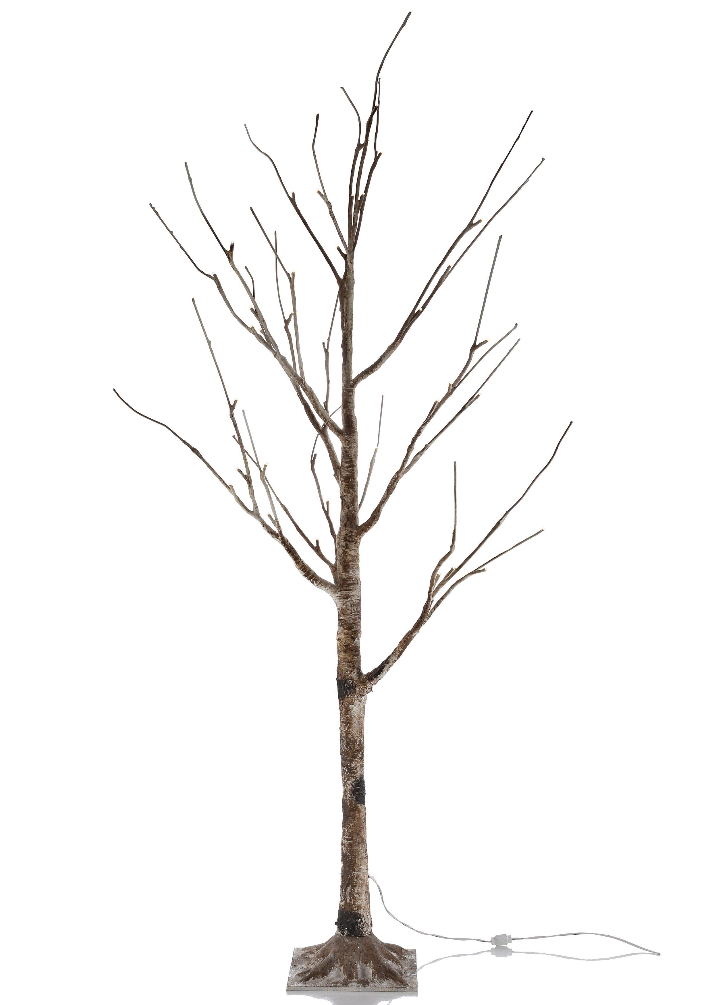 Leuchten Direkt LED-Baum, »Birke«