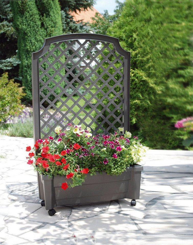 Spalier »mit Pflanzkasten und Bewässerungssystem, 79 cm« in grau