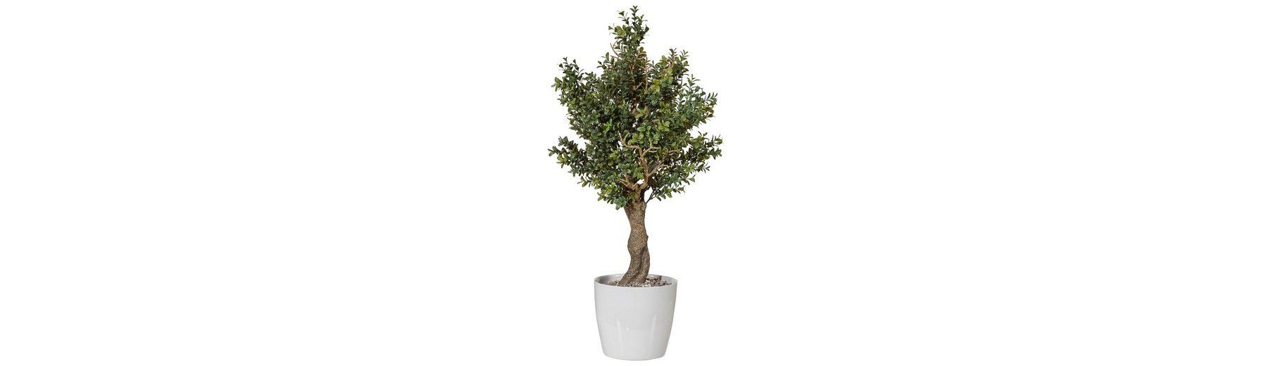 Home affaire Kunstpflanze »Baum«