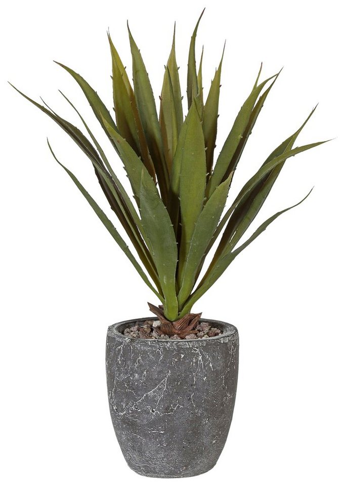 Home affaire Kunstpflanze »Kaktus« in grün