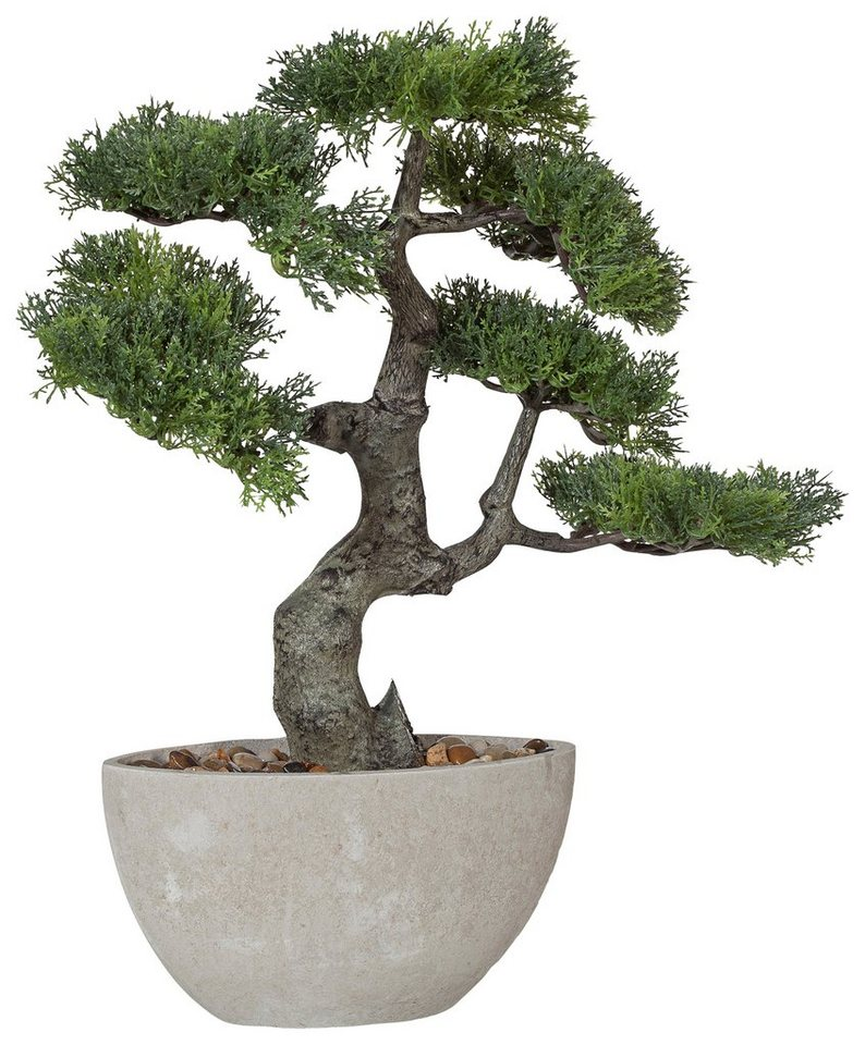 Premium collection by Home affaire Kunstpflanze »Bonsai« in grün