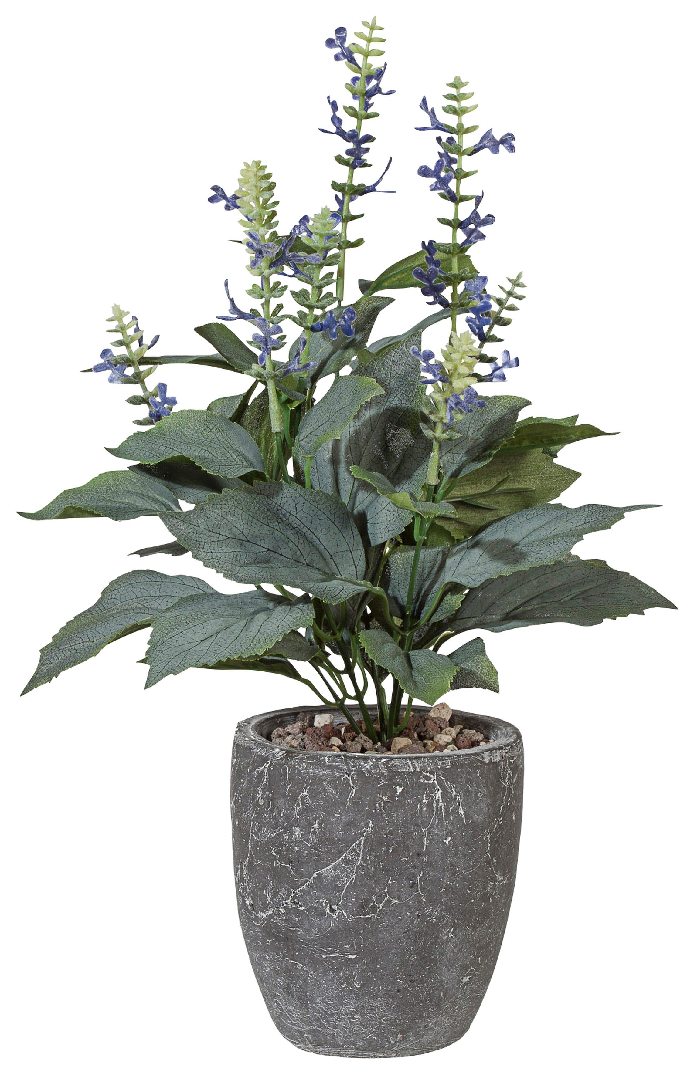 Home affaire Kunstpflanze »Salviabusch«