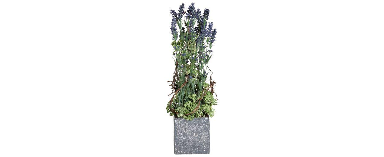 Home affaire Kunstpflanze »Lavendelgesteck«