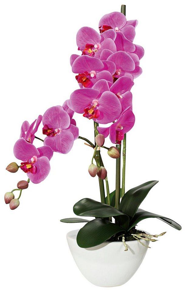 home affaire kunstblume orchidee mit 12 bl ten in keramikschale online kaufen otto. Black Bedroom Furniture Sets. Home Design Ideas