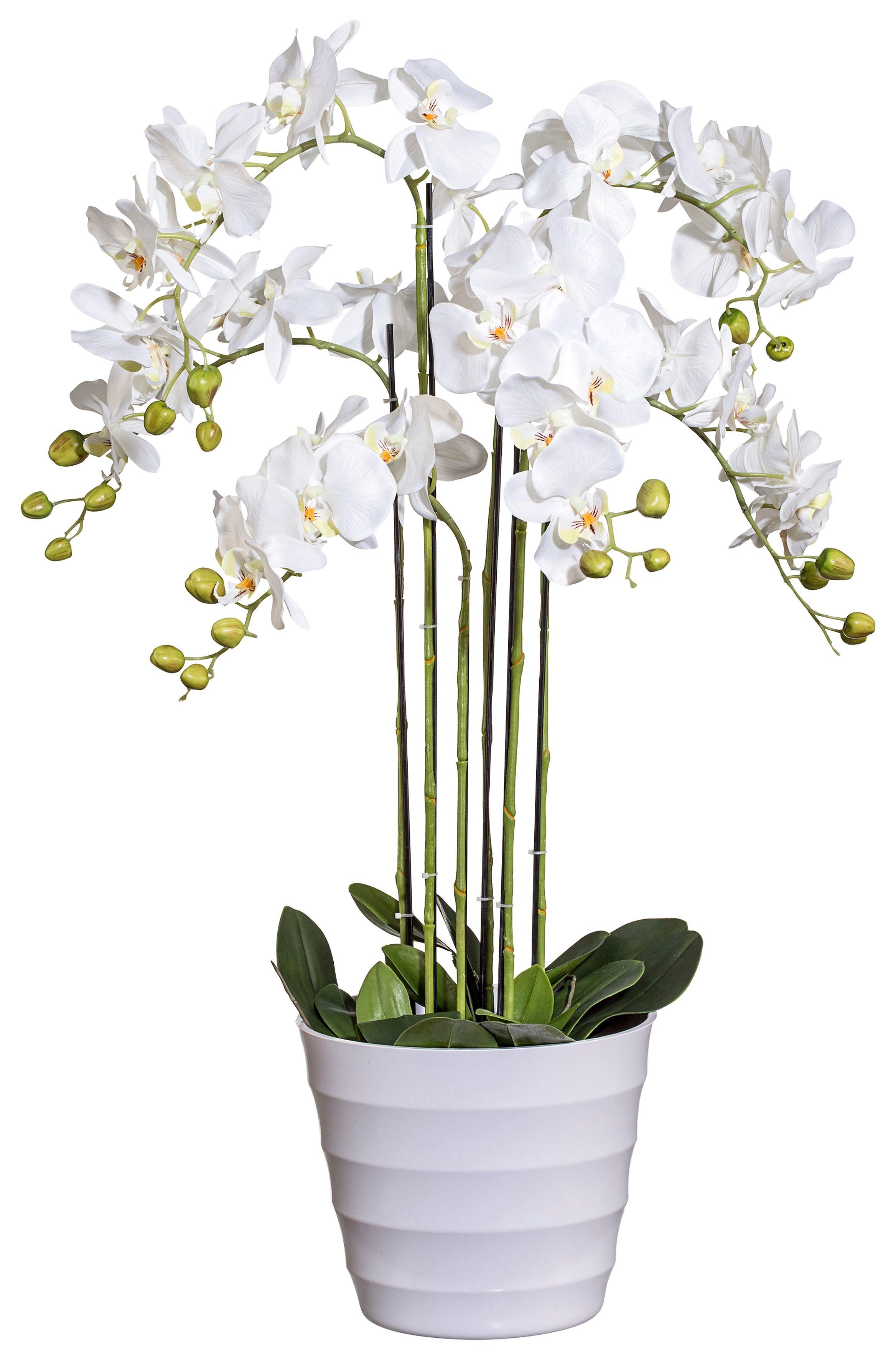 Home affaire Kunstblume »Orchidee« mit Kunststofftopf