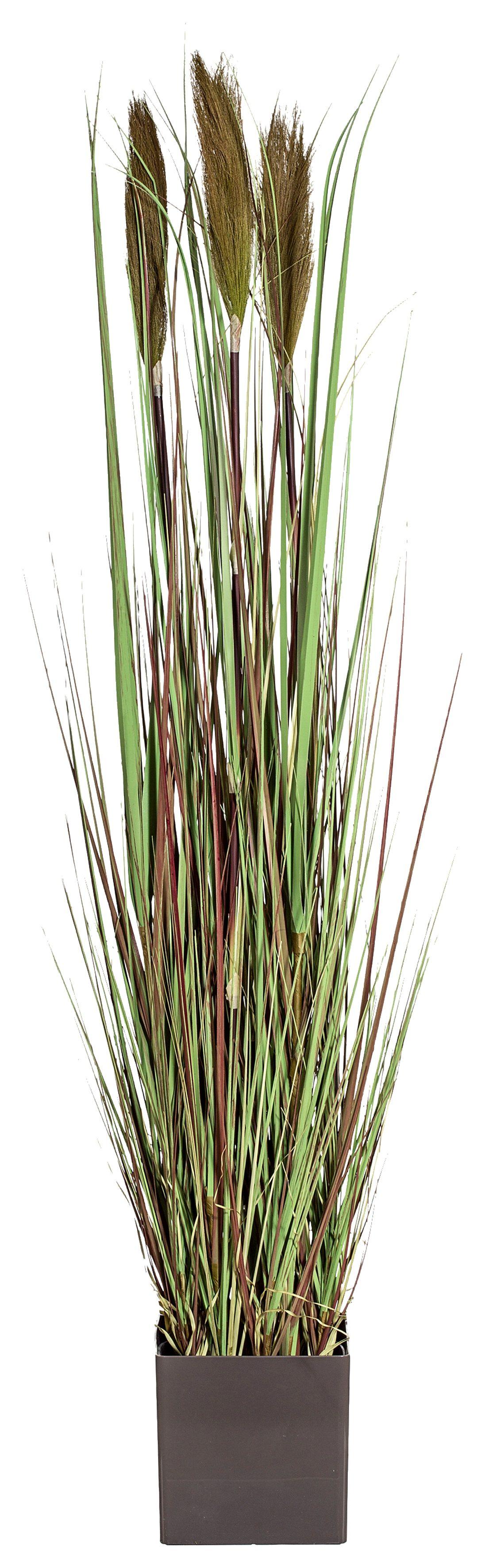 Home affaire Kunstpflanze »Gras« ca. 120 cm hoch