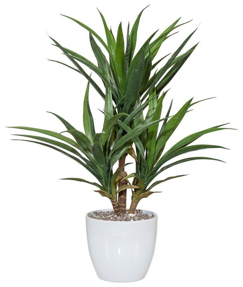 Home affaire Kunstpflanze »Palme« in grün