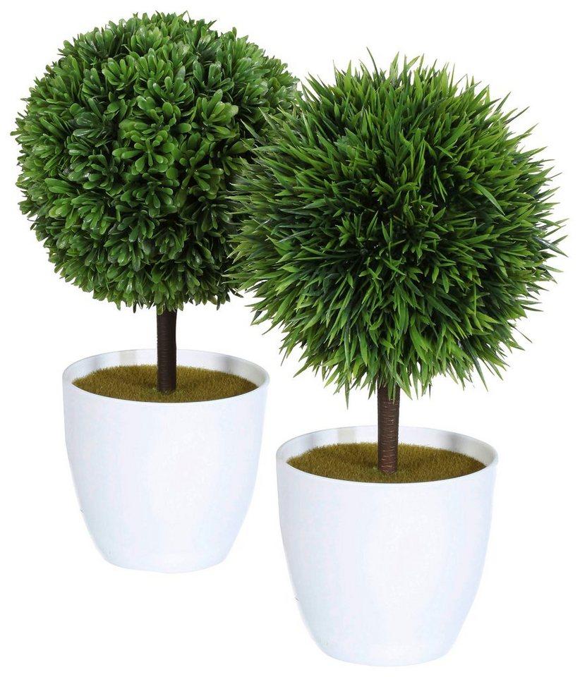 Home affaire Kunstpflanze »Baum« in grün