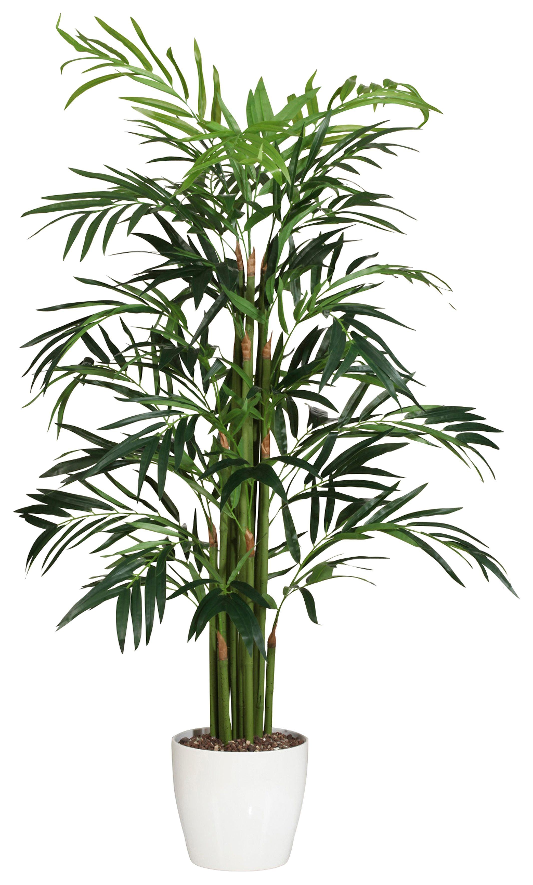 Home affaire Kunstpflanze »Palme«