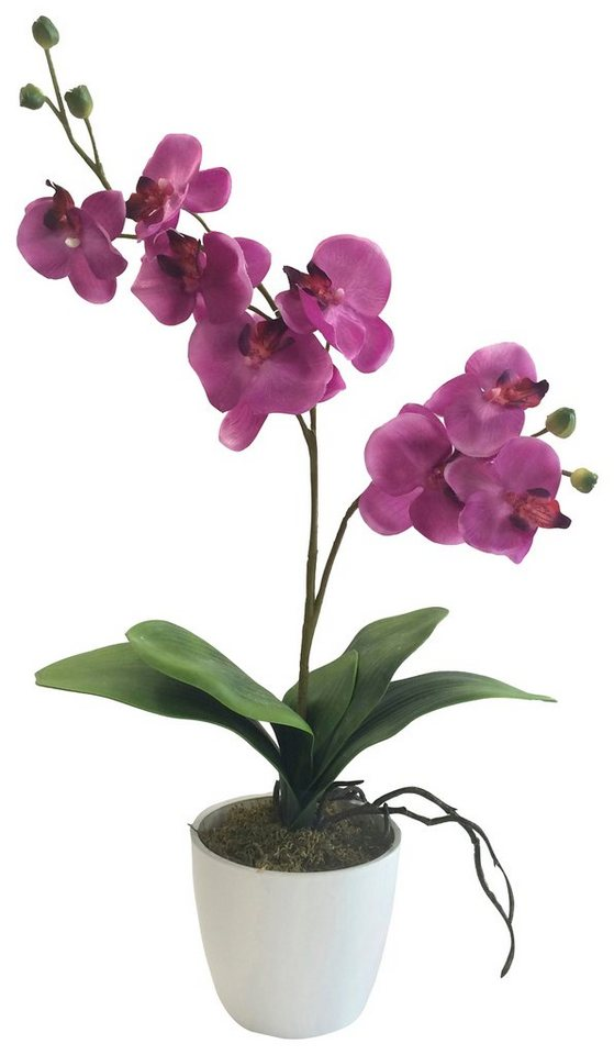 Home affaire Kunstblume »Orchidee« in pink