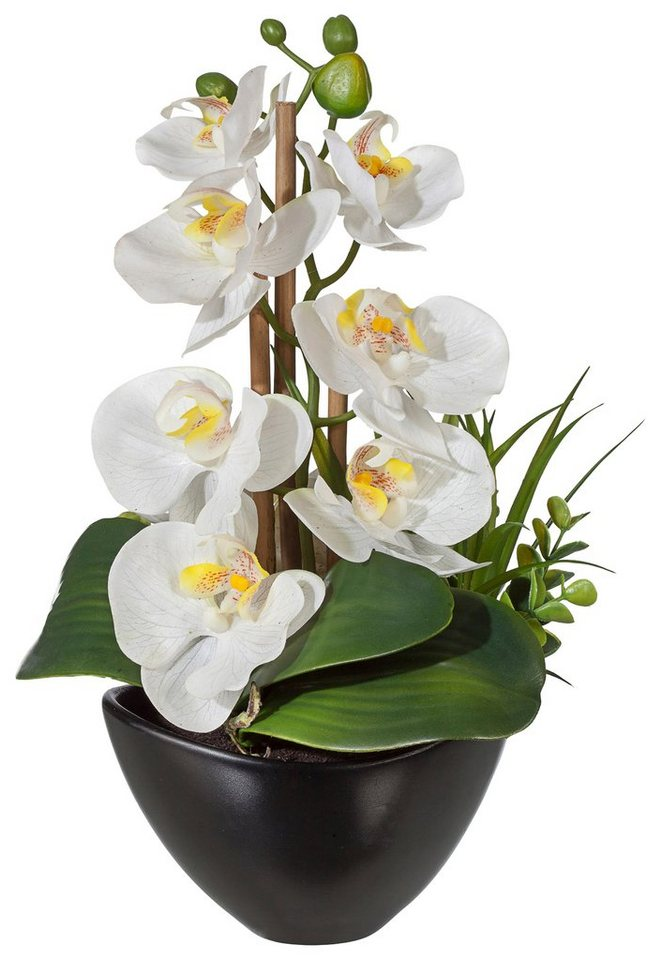Home affaire Kunstblume »Orchidee« in creme