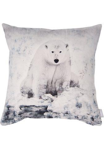 LINNE Pagalvės užvalkalas »Eisbär«