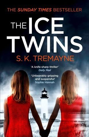 Broschiertes Buch »The Ice Twins«