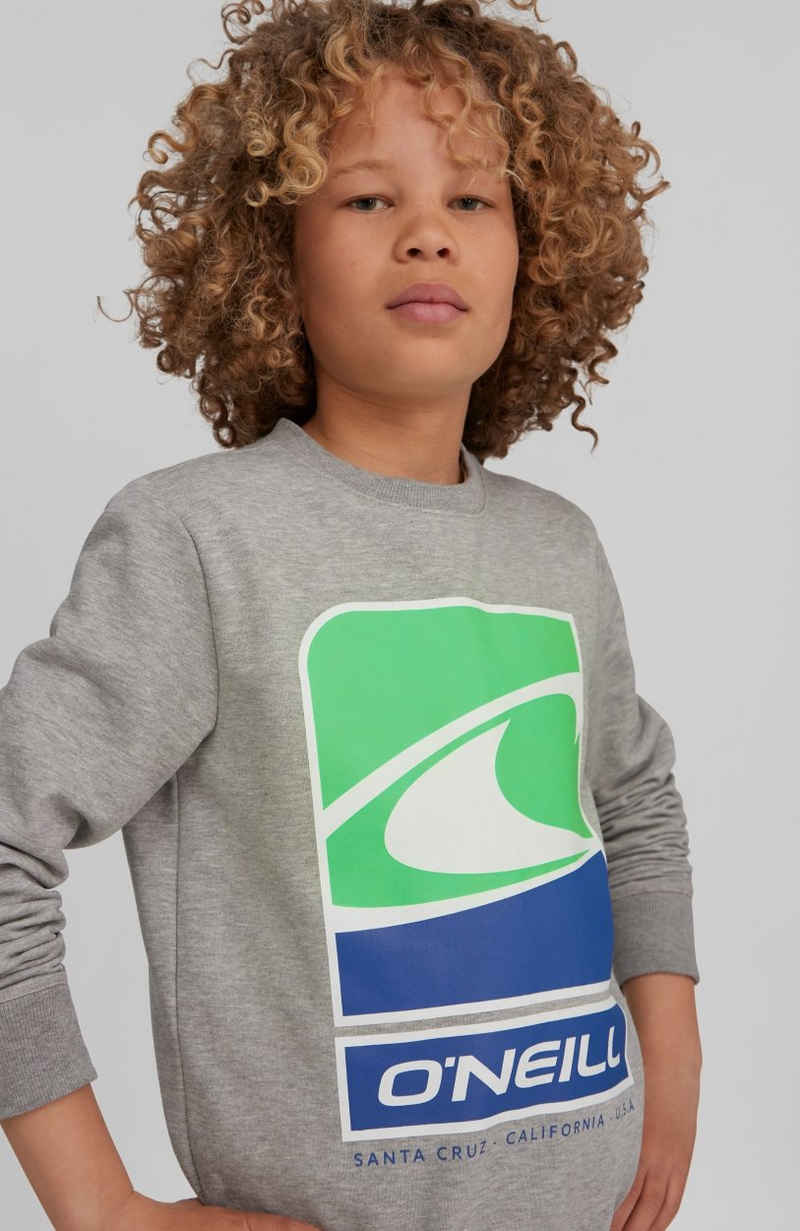 O'Neill Sweatshirt »Flag Wave crew Sweatshirt«