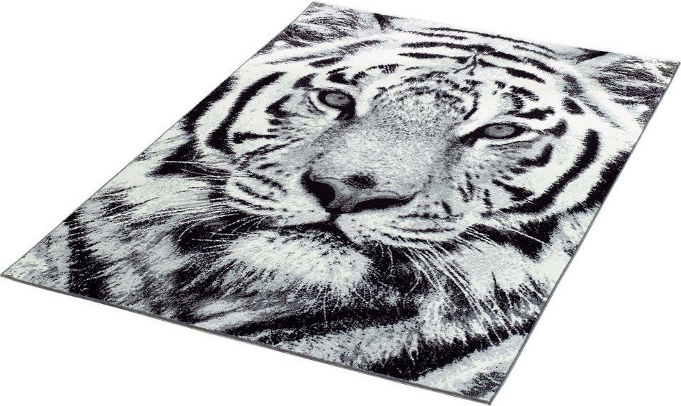 Teppich »Tiger«, Hanse Home, gewebt online kaufen  OTTO